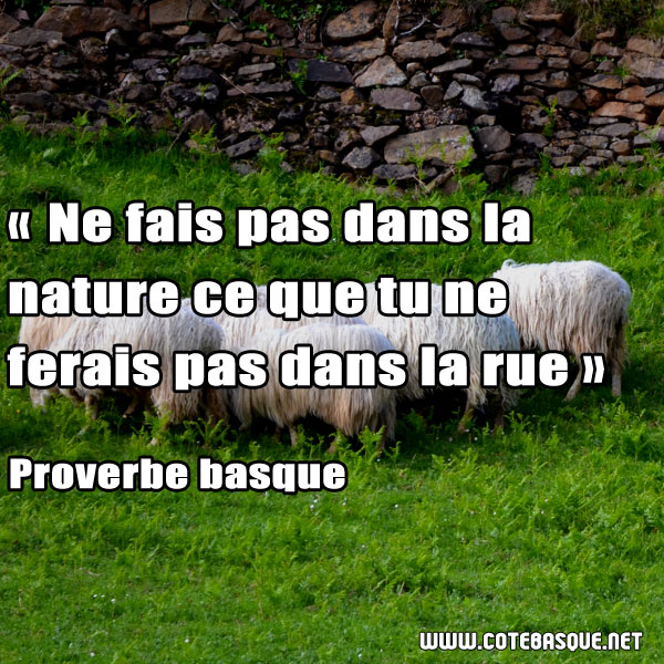 proverbe_basques (12)