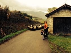 A vélo de Saint-Jean-Pied-de-Port à la côte basque