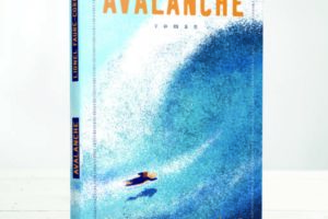 avalanche cote basque