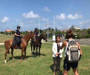 brigade equestre