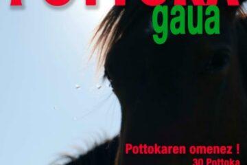 Pottoka Gaua, la nuit du Pottok