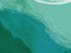 Ostreopsis Ovata