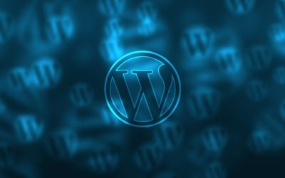 Formation WordPress à la CCI de Bayonne
